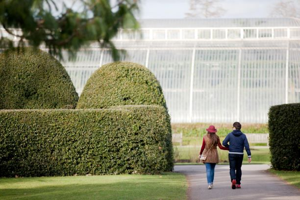 The Secret World of Plants revealed at Kew Gardens this Summer