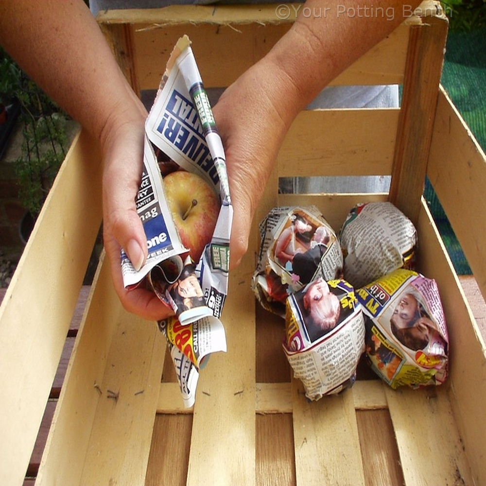 Step 3 of How to store apples