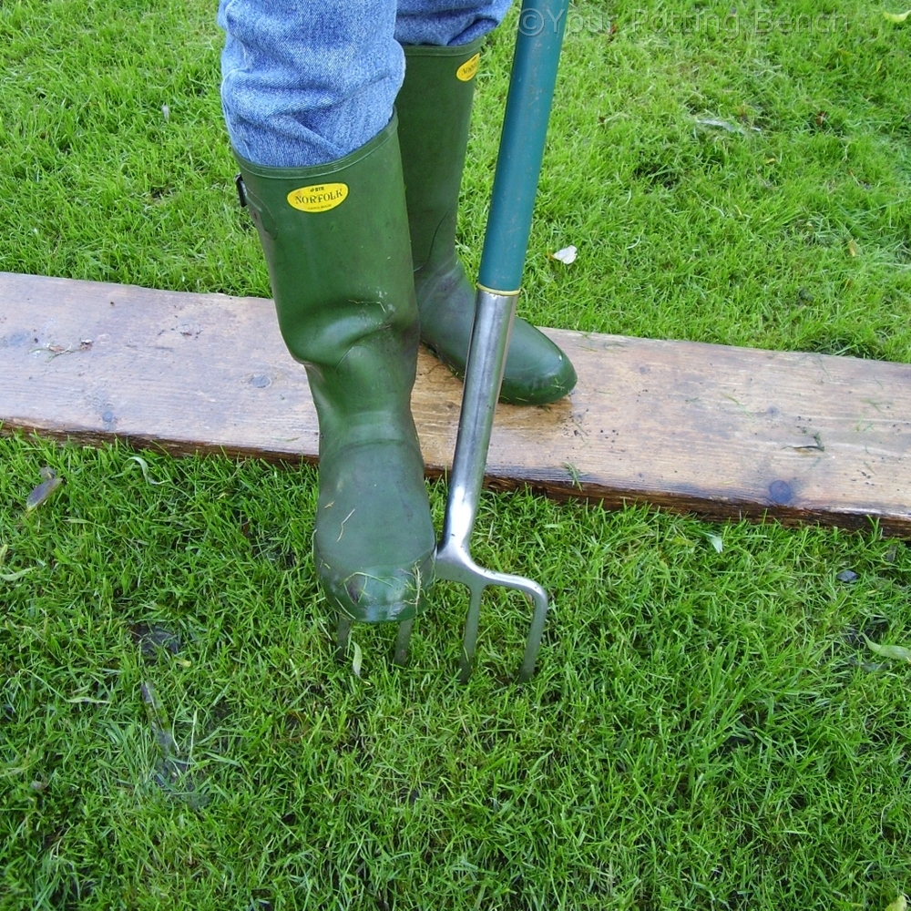 Step 4 of How to keep a lawn drained